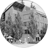 Your Options in Bothell